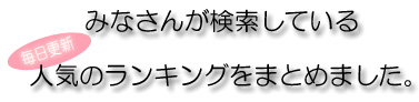 最新作 カスタム デジタル照度計 LX-1330D, 永平寺メガネ:4fb09af6 --- gbo.stoyalta.ru